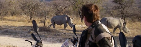 Latest news on Ride for Rhinos