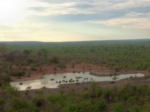 Vic Falls Safari Lodge