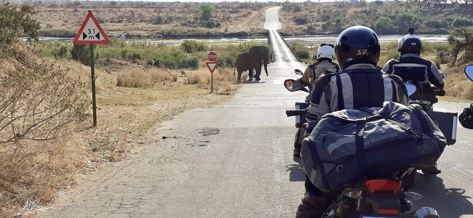 Riding into Kruger